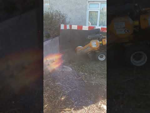 High Quality Stump Grinding in Dundrum by leaf2leaf landscapes