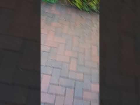 High Quality pressure cleaning done by leaf2leaf landscapes in Sandymount Co.Dublin