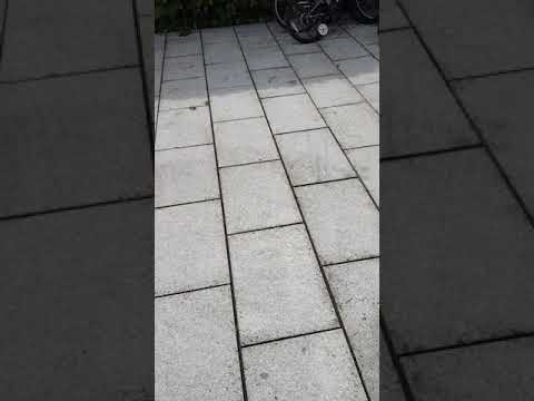 High Quality pressure cleaning and Gardening done by leaf2leaf landscapes in in blackrock Co.dublin