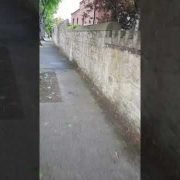 High Quality pressure cleaning,walls cleaning being done by leaf2leaf landscapes  Co.Dublin