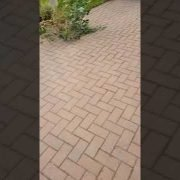 High Quality pressure cleaning ,driveway cleaning in stillorgan Co.dublin done by leaf2leaf landsca
