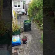 High Quality pressure cleaning and Gardening done by leaf2leaf landscapes in in Cabinteely Co.Dublin