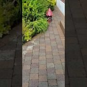 High Quality pressure cleaning &Garden maintenance done by leaf2leaflandscapes Dundrum Co.Dublin