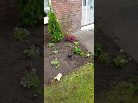 New flower bed done by leaf2leaflandscapes in stilorgan Co.Dublin