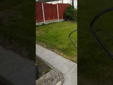 High Quality Garden maintenance done by leaf2leaflandscapes howth Co.Dublin