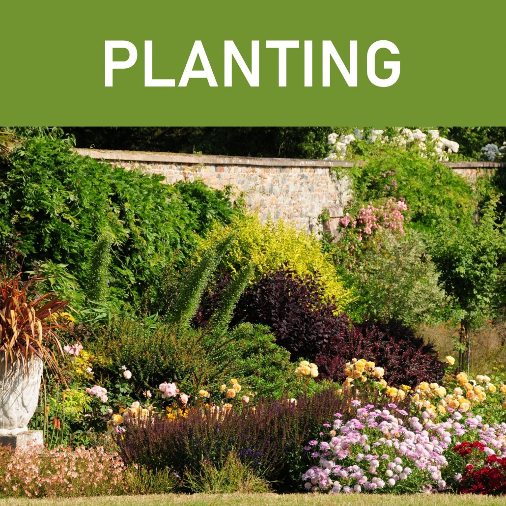 Garden Landscaping, Planting Services Dublin, Weeding Services Dublin, Flagging Services Dublin, New Lawns Dublin, Tree & Hedge Cutting / Shaping Dublin, Flowerbed Maintenance Dublin, Garden Landscaping, Tree Surgery Dublin, Patio Installation Dublin, Garden Clearance & Waste Removal Dublin, Garden Fences Dublin, Garden Sheds Dublin, Outdoor Painting Dublin